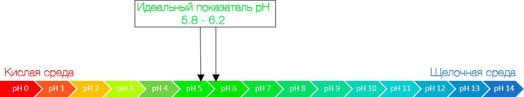 Шкала, показывающая диапазон pH от 0 до 14, с идеальным диапазоном от 5,8 до 6,2